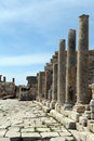 Row of columns in patara turkey Stock Image