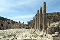 Row of columns and ruins in patara turkey Royalty Free Stock Photography