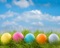 Row of easter eggs in grass decorated on blue sky background Stock Photo