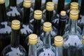 Row of empty big glass bottles Royalty Free Stock Photo