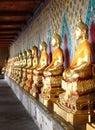 Aligned gold buddha in wat arun, Bangkok, Thaïland Royalty Free Stock Photo