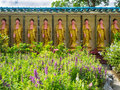Row of golden Buddha statues with swastika symbol