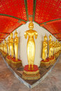 Row golden standing buddha image fisheye views temple thai Stock Images