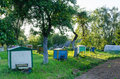 Row hives between tree sun lit rural garden Royalty Free Stock Photo
