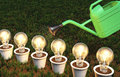Row of light bulbs in pots is watered some lit white arranged a are by a green watering can on a grassy ground Royalty Free Stock Photo