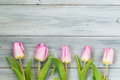 Row of light pink tulips on wooden background, top view Royalty Free Stock Photo
