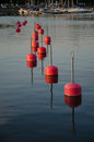 Row of red bouys reflecting in the water Royalty Free Stock Images