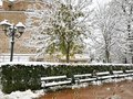 Wooden snow covered benches in winter Sofia Royalty Free Stock Photo