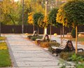 Row of sunlit empty wooden benches in the modern park. Autumn, sunset Royalty Free Stock Photo