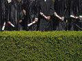 Row of university students in graduation gowns holding diplomas mid section hedge in foreground Stock Photo