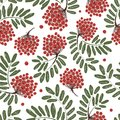 Rowan branch with berries seamless pattern for your design this is file of eps format Royalty Free Stock Photos