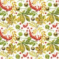 Rowan leaves and bunches of berries. The leaf and the nut of the chestnut tree. Autumn theme in watercolor illustration Royalty Free Stock Photo