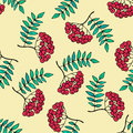 Rowan vector seamless pattern.