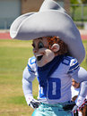 Rowdy dallas cowboy nfl mascot the for football team in the taken in oxnard ca youth camp Royalty Free Stock Photography