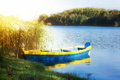 Rowing boat on sunny lake sun shining with colorful in foreground Royalty Free Stock Photos