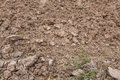 Rown soil of an agricultural field texture countryside Royalty Free Stock Images