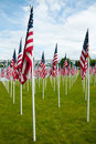 Rows of American flags Stock Image