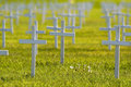Rows of Crosses Stock Images