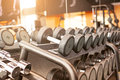 Rows of dumbbells in the gym Royalty Free Stock Photo
