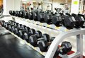 Rows of dumbbells on the rack view at gym Stock Photo