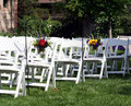 Rows of guest chairs for outdoor wedding with sunflower daisy arrangements Stock Photo