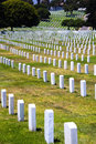 Rows of headstones of fallen soldiers Stock Photography
