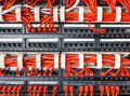 Rows of network cables connected to router and switch hub Royalty Free Stock Photo