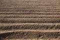 Rows pattern in a plowed field