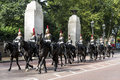Royal Army and Horses