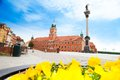 Royal castle and zamkowy square monument column and flowers on foreground in warsaw capital city of poland Royalty Free Stock Images