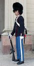 Royal Danish Guardsman Royalty Free Stock Photos
