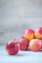 Royal Gala Apples Royalty Free Stock Photo