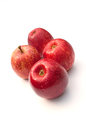 Royal gala apples red on white background Royalty Free Stock Photography