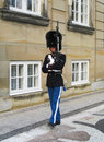 Royal guard guarding amalienborg castle on august in copenhagen denmark protecting the life guards is an Royalty Free Stock Image