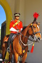 Royal guard on horse guarding the palace Royalty Free Stock Images