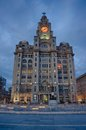 Royal liver building at night Stock Photos
