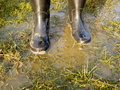 Rubber boot in grass background Royalty Free Stock Images