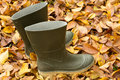 Rubber boots on autumn leaves Stock Photos