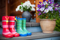 Rubber boots and flowers Royalty Free Stock Photo