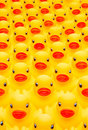 Rubber duck army Royalty Free Stock Image