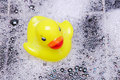 Rubber Duck and Bubbles Royalty Free Stock Photo