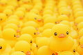Rubber duck close up shot of Royalty Free Stock Photos