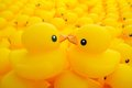 Rubber duck close up of yellow Royalty Free Stock Images