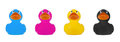 Rubber Duck CMYK concept Royalty Free Stock Photo