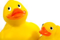 Rubber duck and duckling Royalty Free Stock Photos