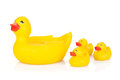 Rubber duck family isolated on white background Stock Photography
