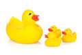 Rubber duck family isolated on white background Royalty Free Stock Image