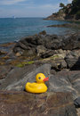 Rubber Duck On Mediterranean Shore Stock Photos