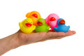 Rubber ducks isolated Royalty Free Stock Photography
