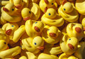 Rubber ducks a large number of yellow duck toys Stock Photo